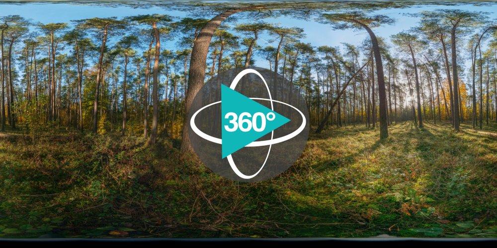 Natur - 360°